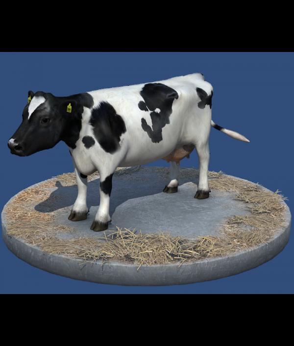 NMY I Virtuelle Nutztier Evaluation I 3D Avatar