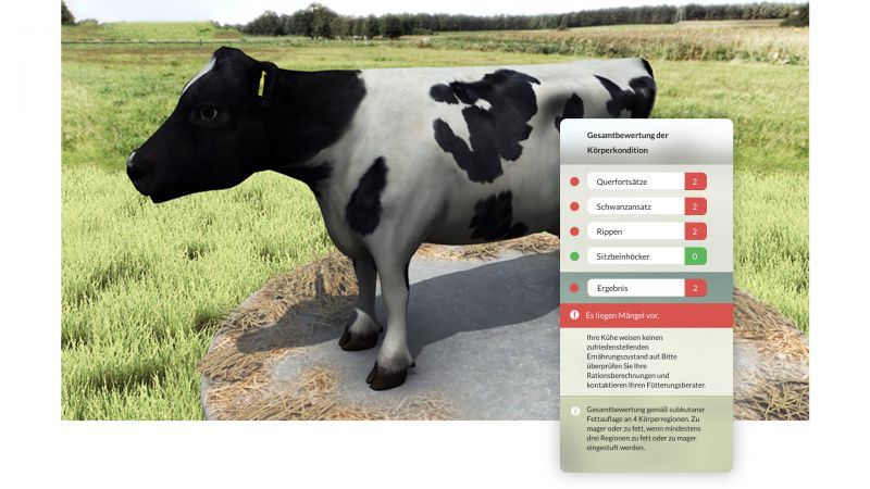 NMY I Virtuelle Nutztier Evaluation I Kuhfigurator